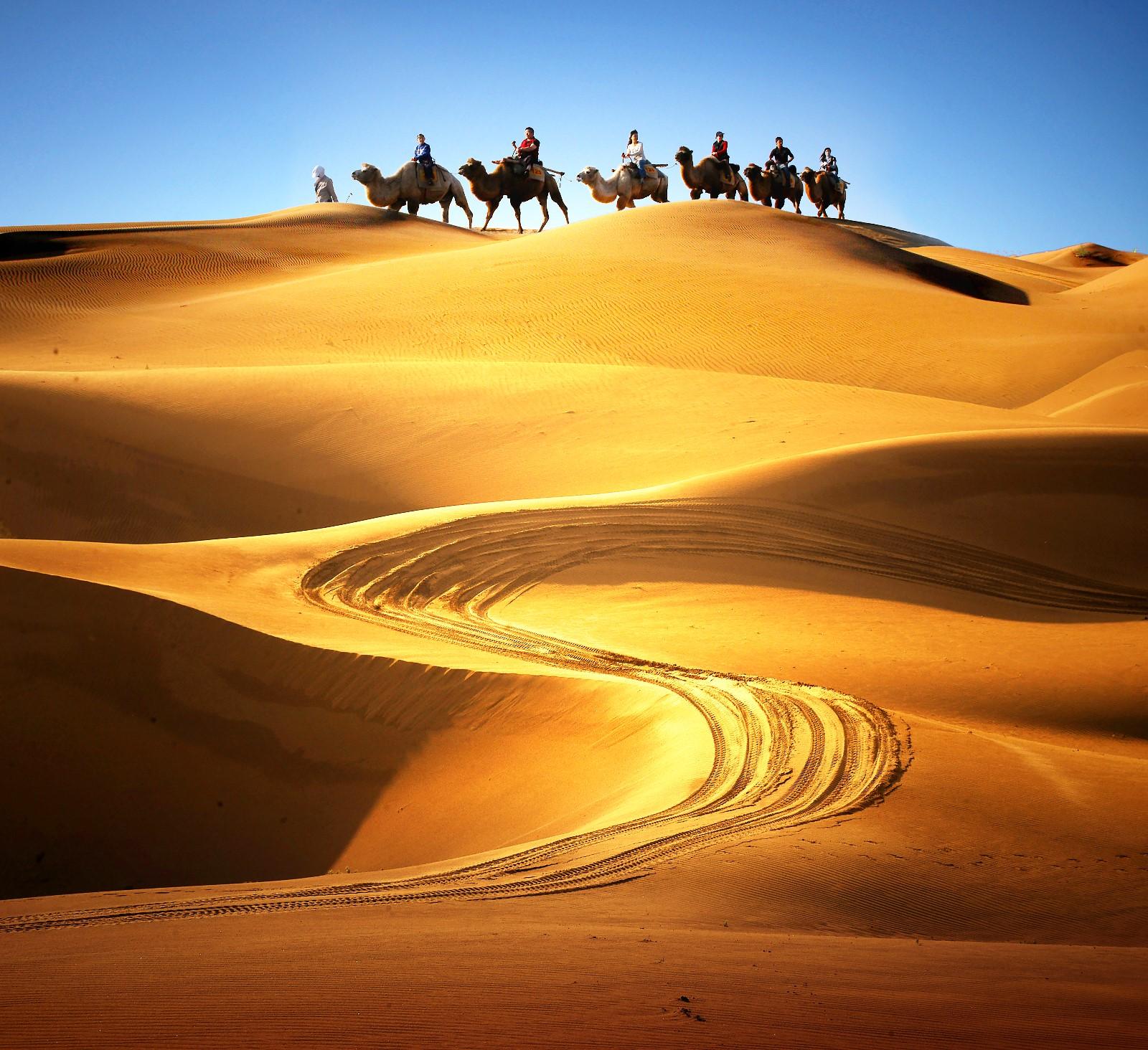 沙漠乘驼.jpg