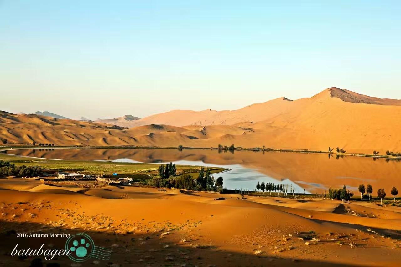 沙漠绿洲.jpg