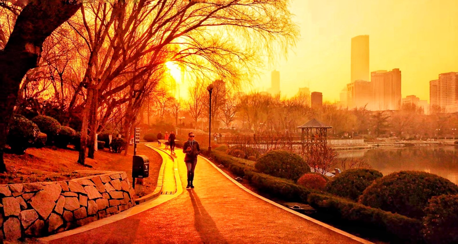 《公园一瞥》.jpg