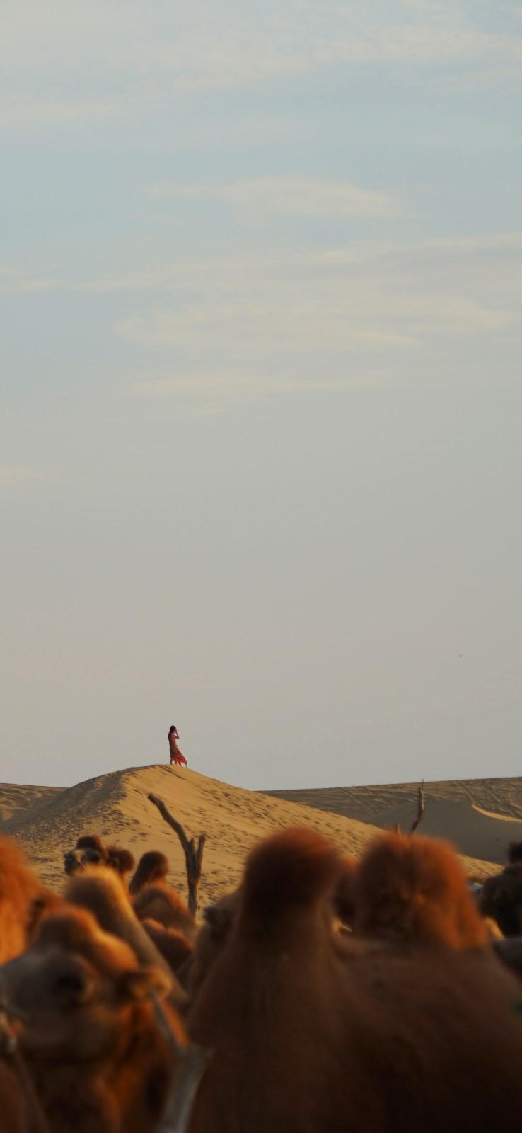 内蒙古-阿拉善-女人.jpg
