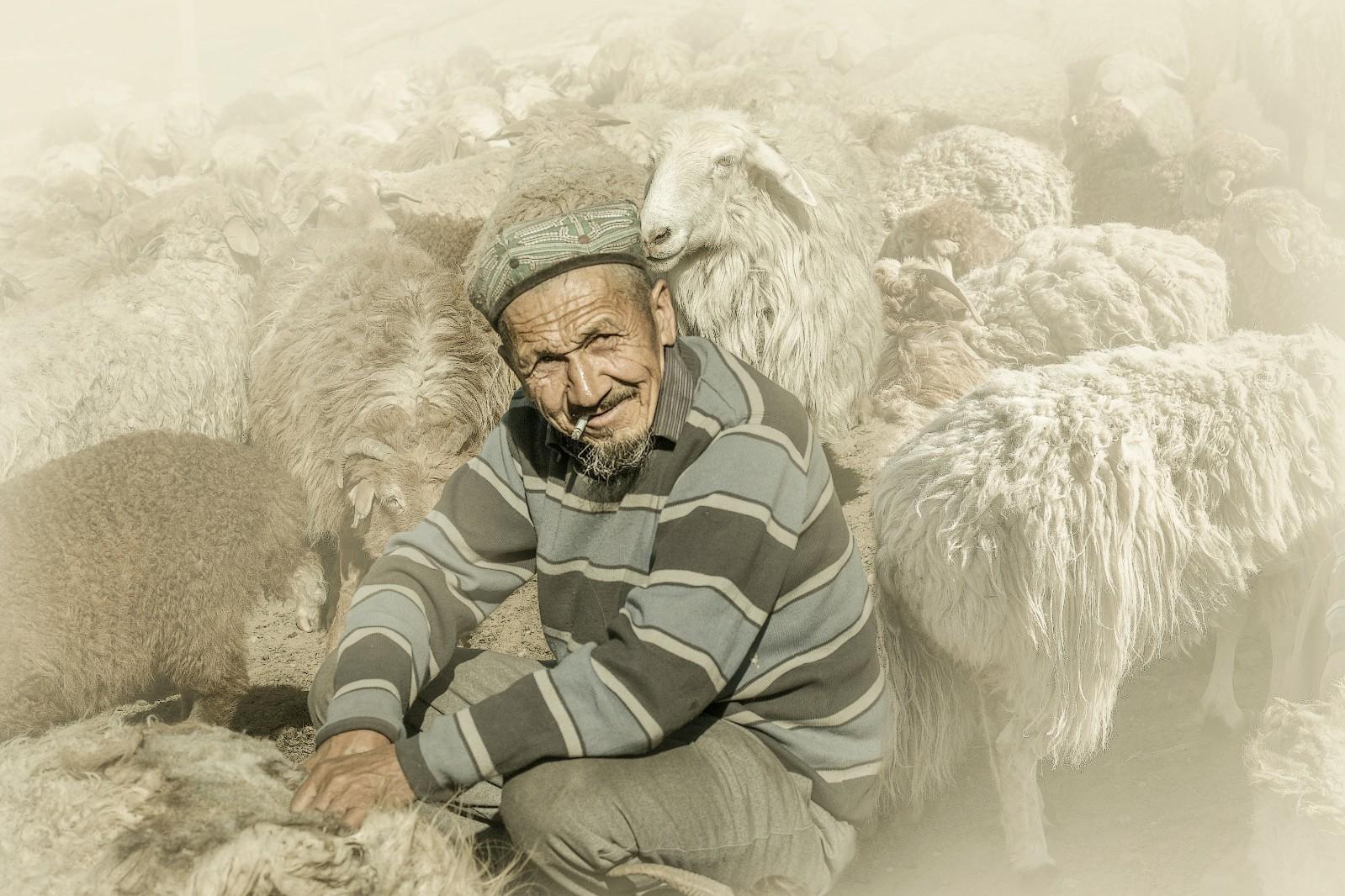 《剪羊毛的维族大爷》.jpg