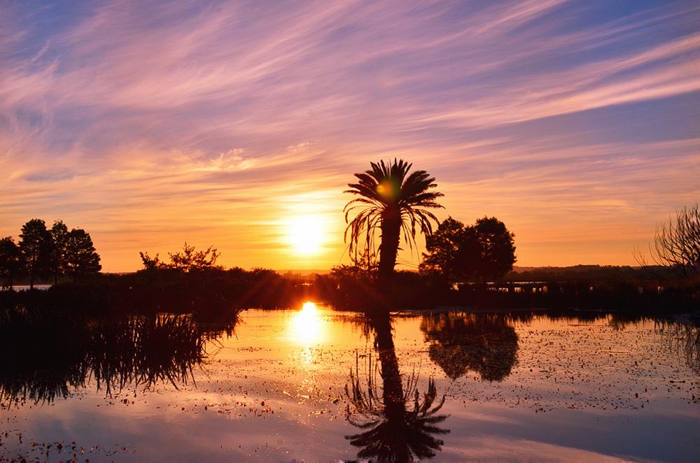 《湖边日出》.jpg